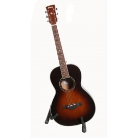 Ibanez Acoustic(Travelling)