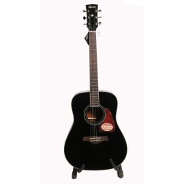 Ibanez Acoustic